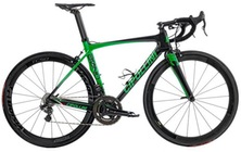 CIPOLLINI Bond Green 2015