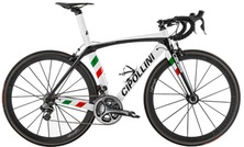 CIPOLLINI Logos Italian...